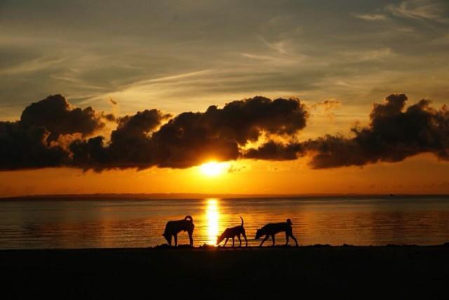 バンタヤン島の夕日
