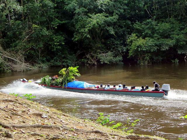 中央スリナム自然保護区