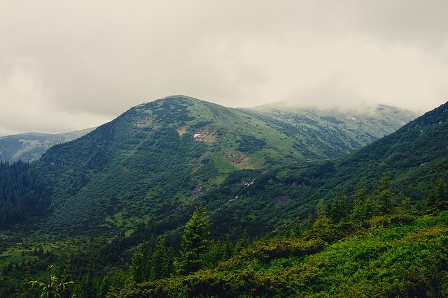 カルパチア山地のブナ原生林