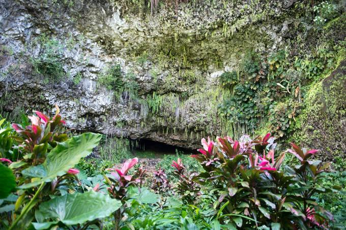 シダの洞窟/カウアイ島