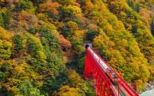 富山のおすすめ観光スポット52選