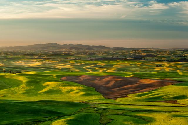 Sunshine over crop fields in Palouse hills