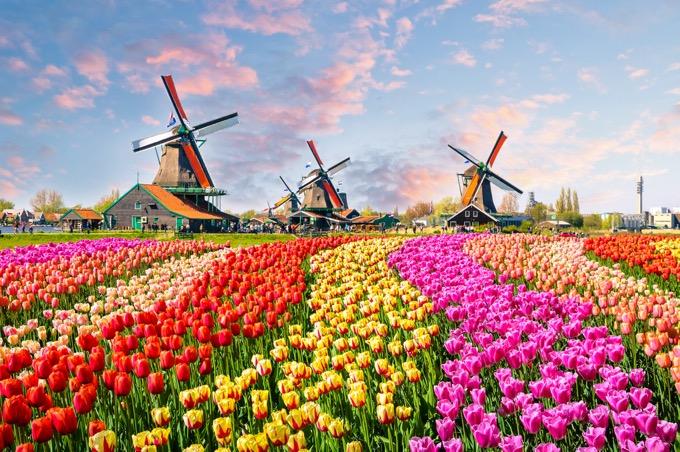 オランダ旅行の基本情報