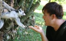 ガイド付きで10ドル!マダガスカルの「ナハンプアナ自然保護区」で野生動物と友達になってきた