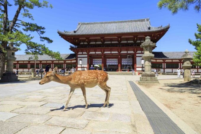 奈良県の古都奈良
