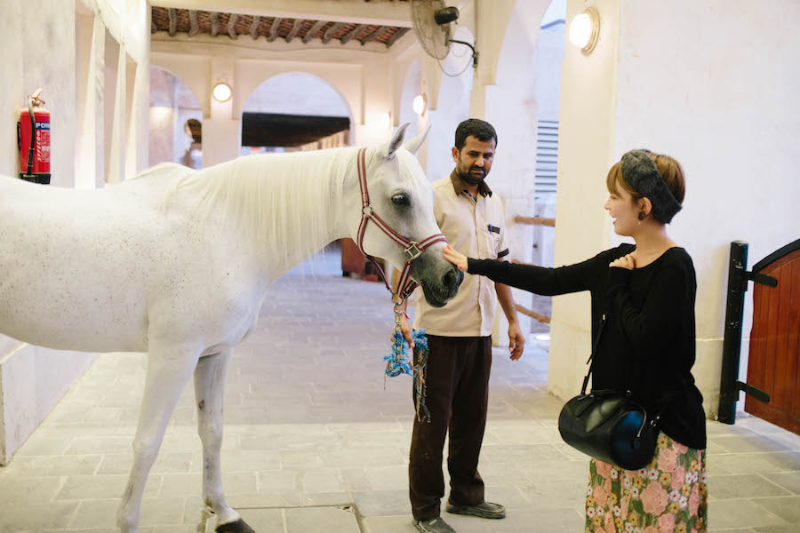 ドーハで馬に触る女性