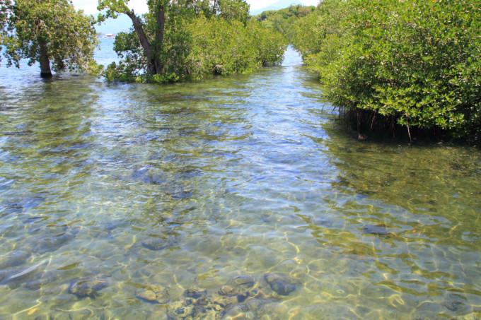 プエルト・プリンセサ地底河川国立公園