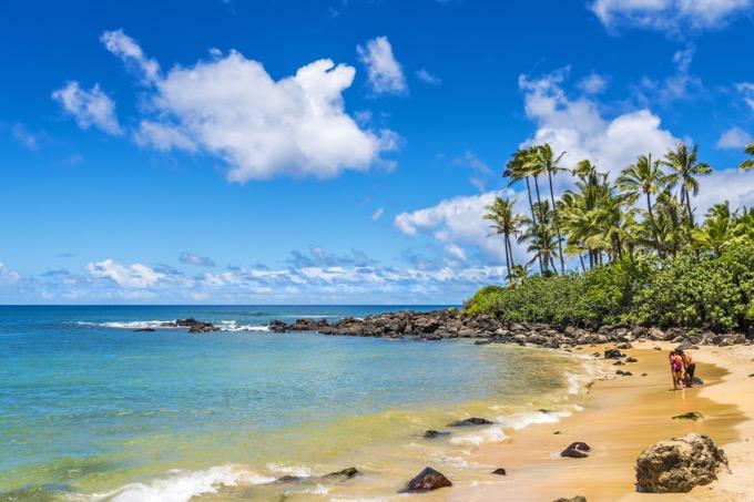 ノースショア / ハワイ