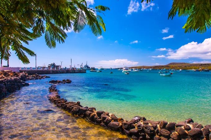 ガラパゴス諸島 / エクアドル