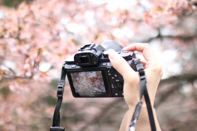 #旅と写真と文章と