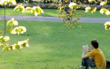 忙しい毎日に一瞬の癒しを。フランス人に学ぶ優雅な公園の過ごし方4選