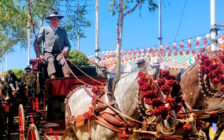 可愛すぎて悶絶!スペイン3大祭り「フェリア・デ・アブリル」を体験してきた