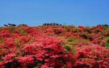 福島観光でおすすめの絶景スポット11選