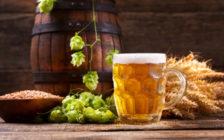 旅行好きにおすすめのギネスビール10選