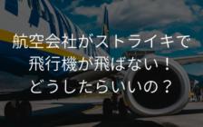 航空会社がストライキで飛行機が飛ばない!どうしたらいいですか? | プロフェッショナルに聞いてみよう