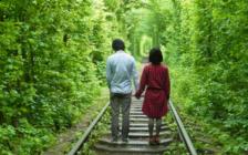 あのジンクスは本当!「緑のトンネル」の行き方と注意点を押さえて恋人と素敵な写真を撮ろう