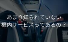 あまり知られていない機内サービスってあるの? | プロフェッショナルに聞いてみよう