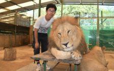 ライオンより犬が強い!南米にある世界一危険なルハン動物園で日本では味わえない体験をしよう