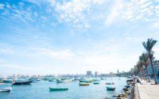 「地中海の真珠」エジプト第二の都市アレクサンドリア【写真27枚】