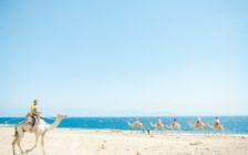 砂漠と潮の香り!エジプトのシャルム・エル・シェイク【写真30枚】
