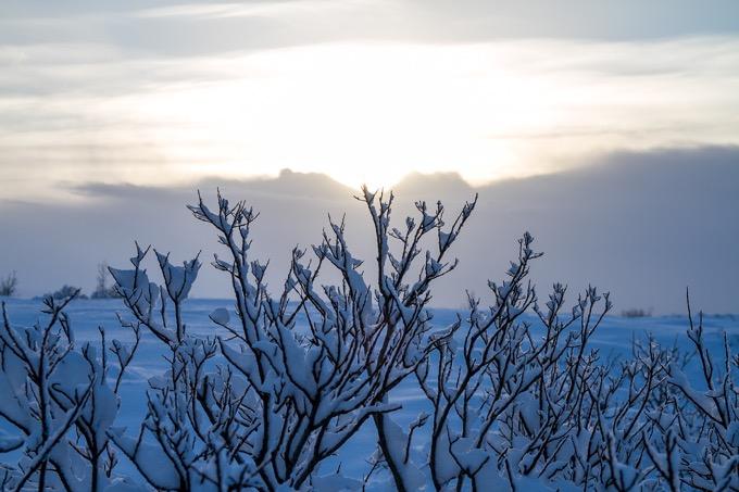 冬にアイスランドを旅行した理由は?