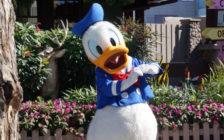 フロリダの「ウォルト・ディズニー・ワールド・リゾート」4大パークまとめ