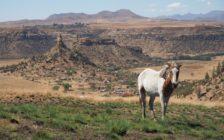 まるで異世界。自然が造り出すレソト王国の不思議な岩山の絶景「タバ・ボシウ」