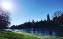 オークランドから車で1時間30分!ニュージーランド・ハミルトンの穴場観光スポット