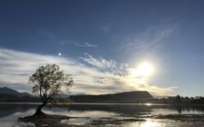 最高のドライブを!ニュージーランド南島を周遊して大自然を独り占めしよう