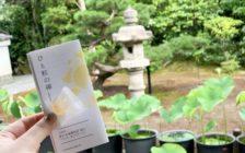 ひと粒の飴で禅体験。京都・退蔵院で心を整える
