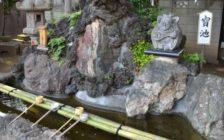 川越「熊野神社」の参拝方法!銭洗い弁財天で財運をあげよう