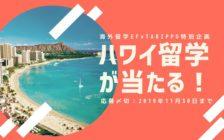 【航空券&留学体験が当たるキャンペーン中!】語学とバカンスだけじゃない、ハワイ留学の魅力5つ