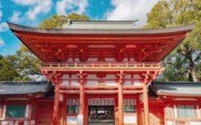 大宮で神社巡りをするなら、武蔵一宮氷川神社へ!ご利益や参拝方法は?