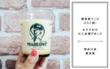 横須賀のお土産に買いたい!「マーロウ」のビーカー入り手作り焼きプリン