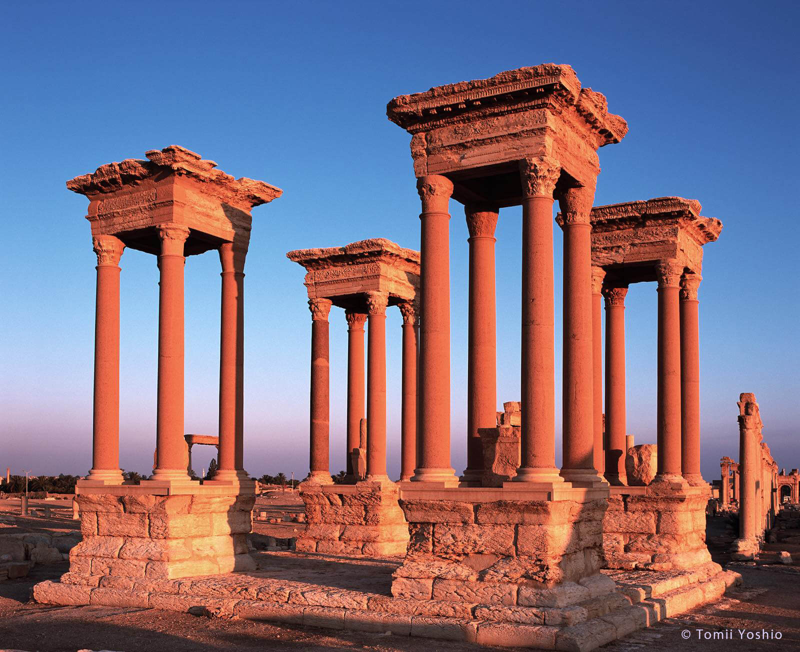 パルミラの遺跡