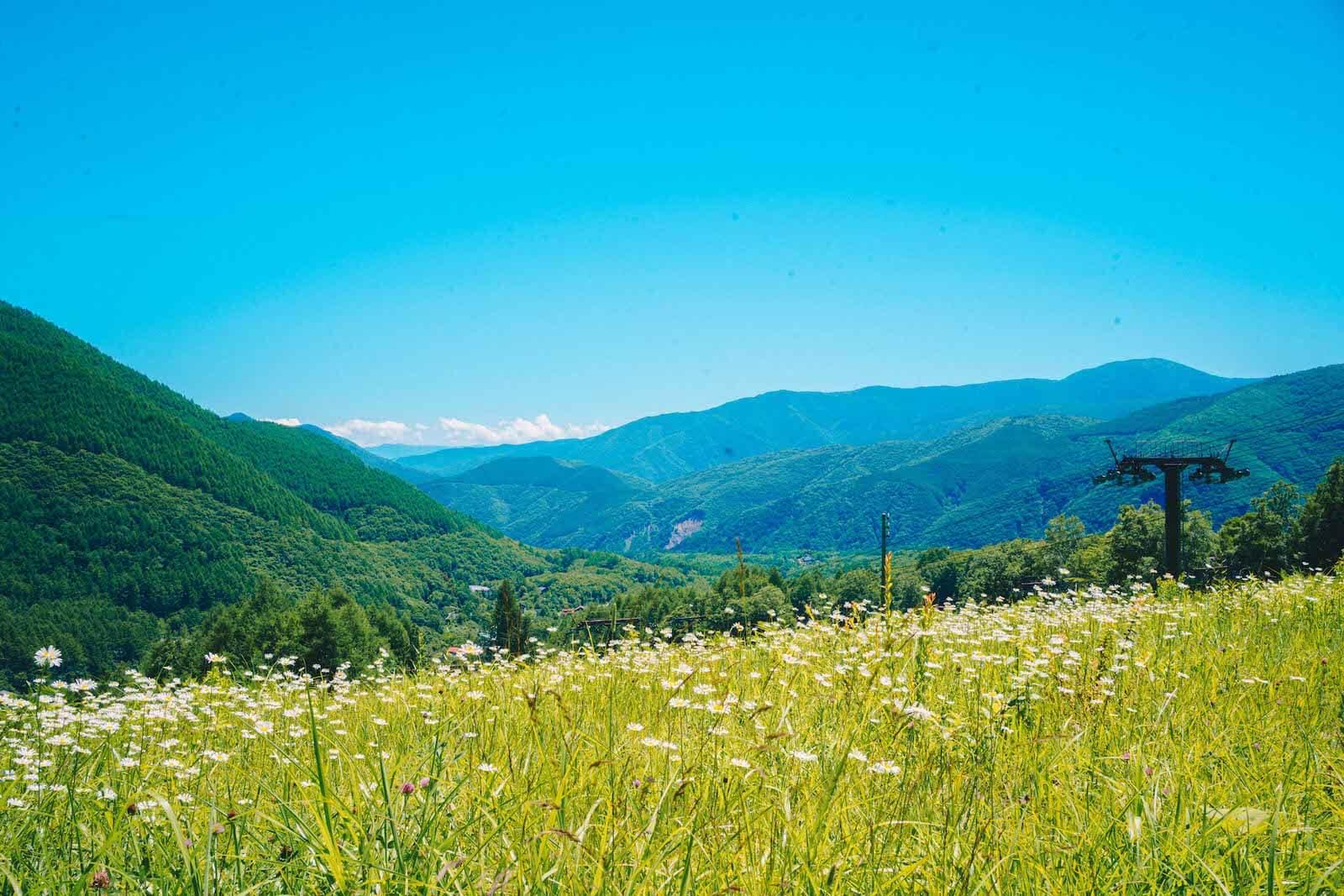 乗鞍高原の景色