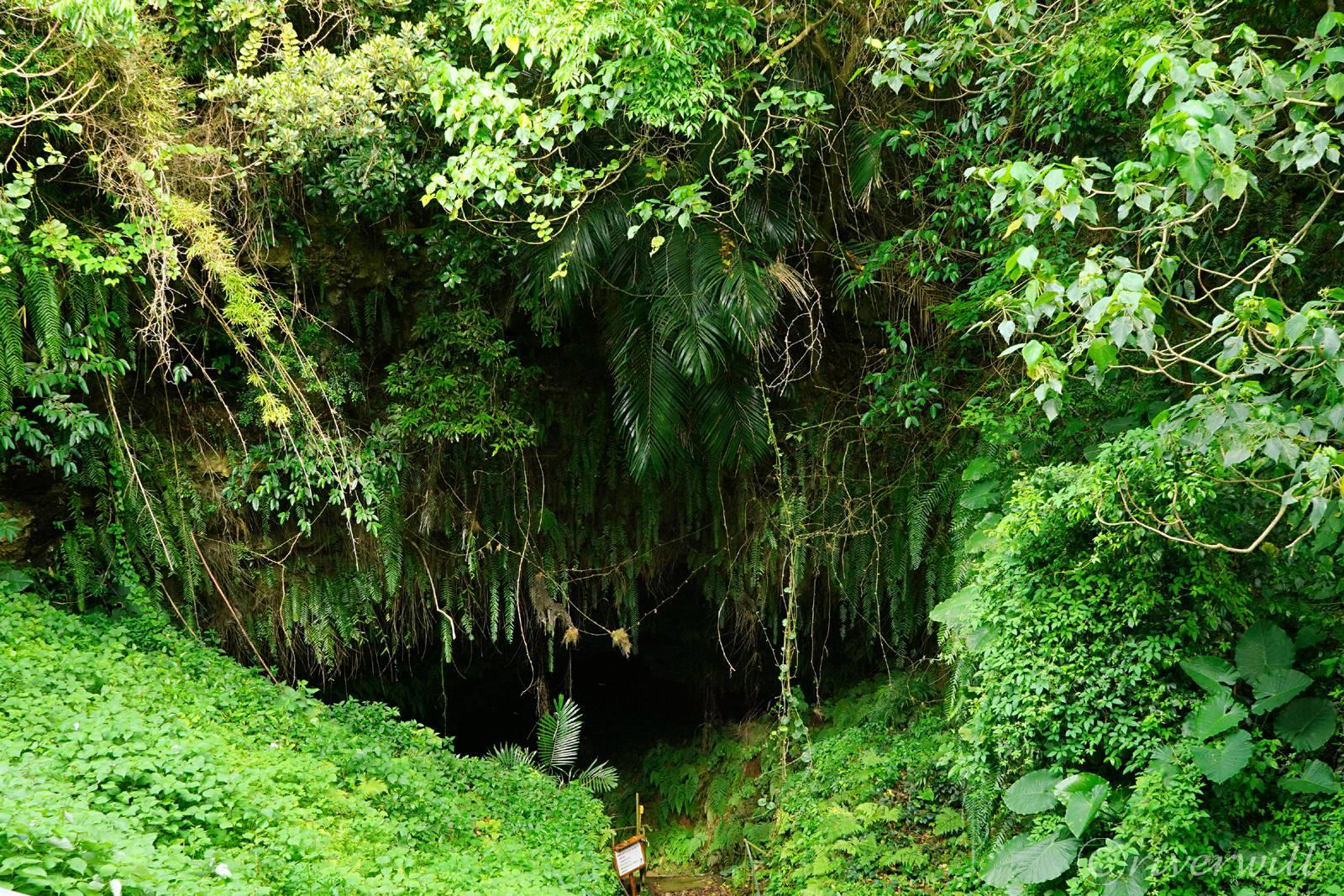 地下を流れるかつての生活用水、住吉暗川