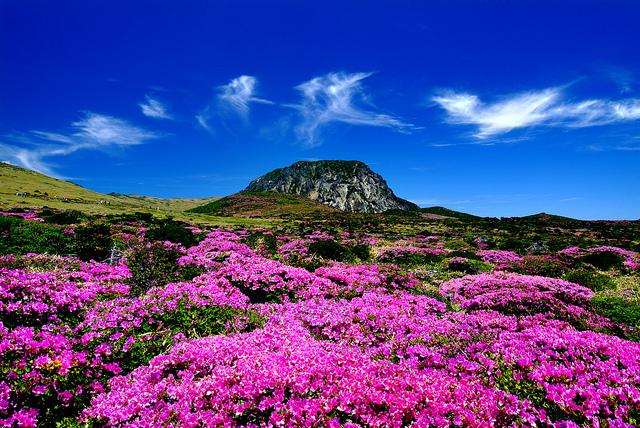 済州火山島と溶岩洞窟群
