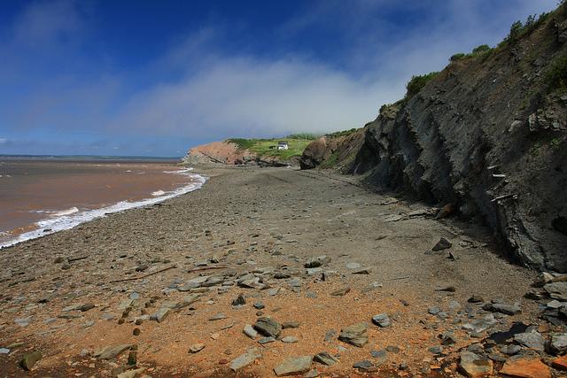 ジョギンズ化石断崖