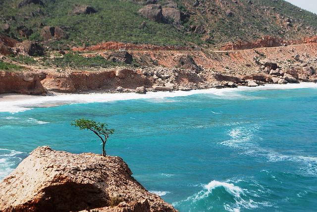 ソコトラ諸島