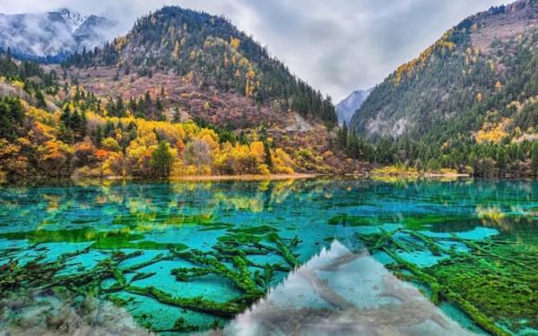 九寨溝の最も美しい湖、五花梅
