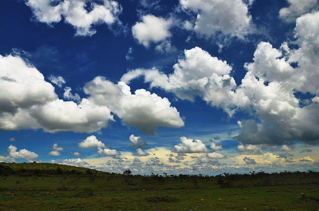 ケニアのグレート・リフト・バレー湖沼地域