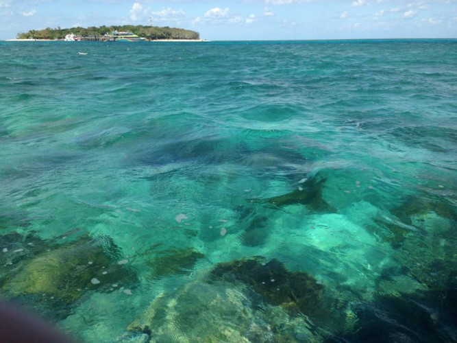 Cairns GreenIsland