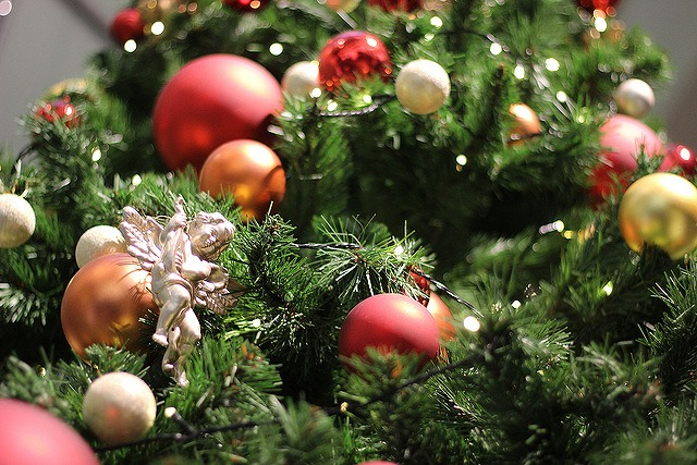 クリスマスの代名詞 クリスマスツリー