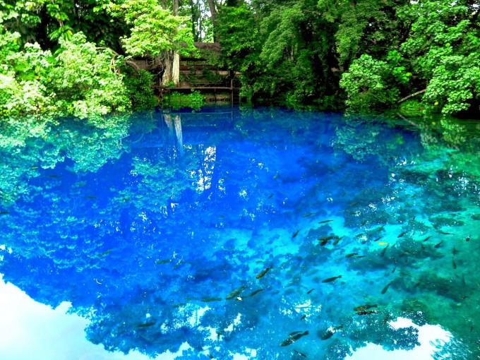 Nanda blue hole vanuatu