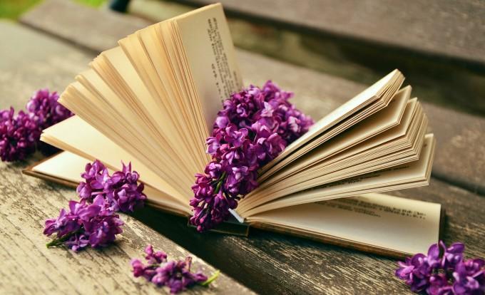 book-759873_1280