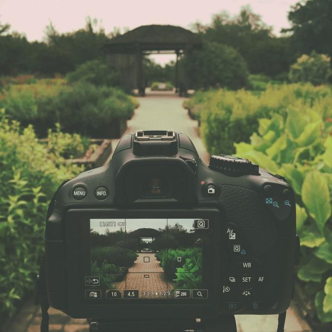 一眼レフで撮影しているカメラ