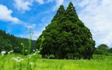トトロに会える絶景も!山形県に行ったら訪れたい絶景11選