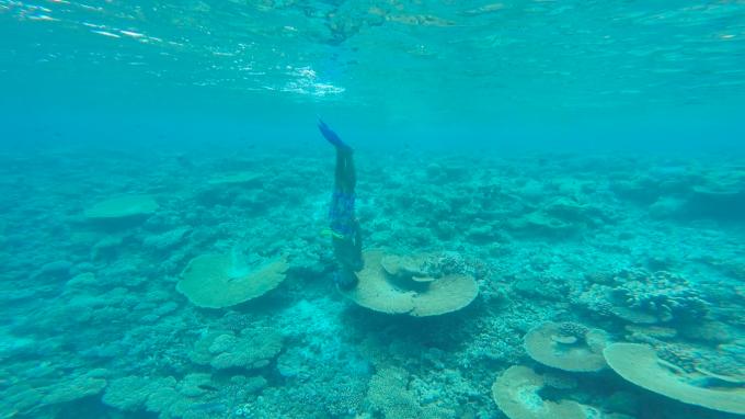 insta- maldivs