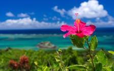 沖縄旅行でおすすめの観光スポット15選